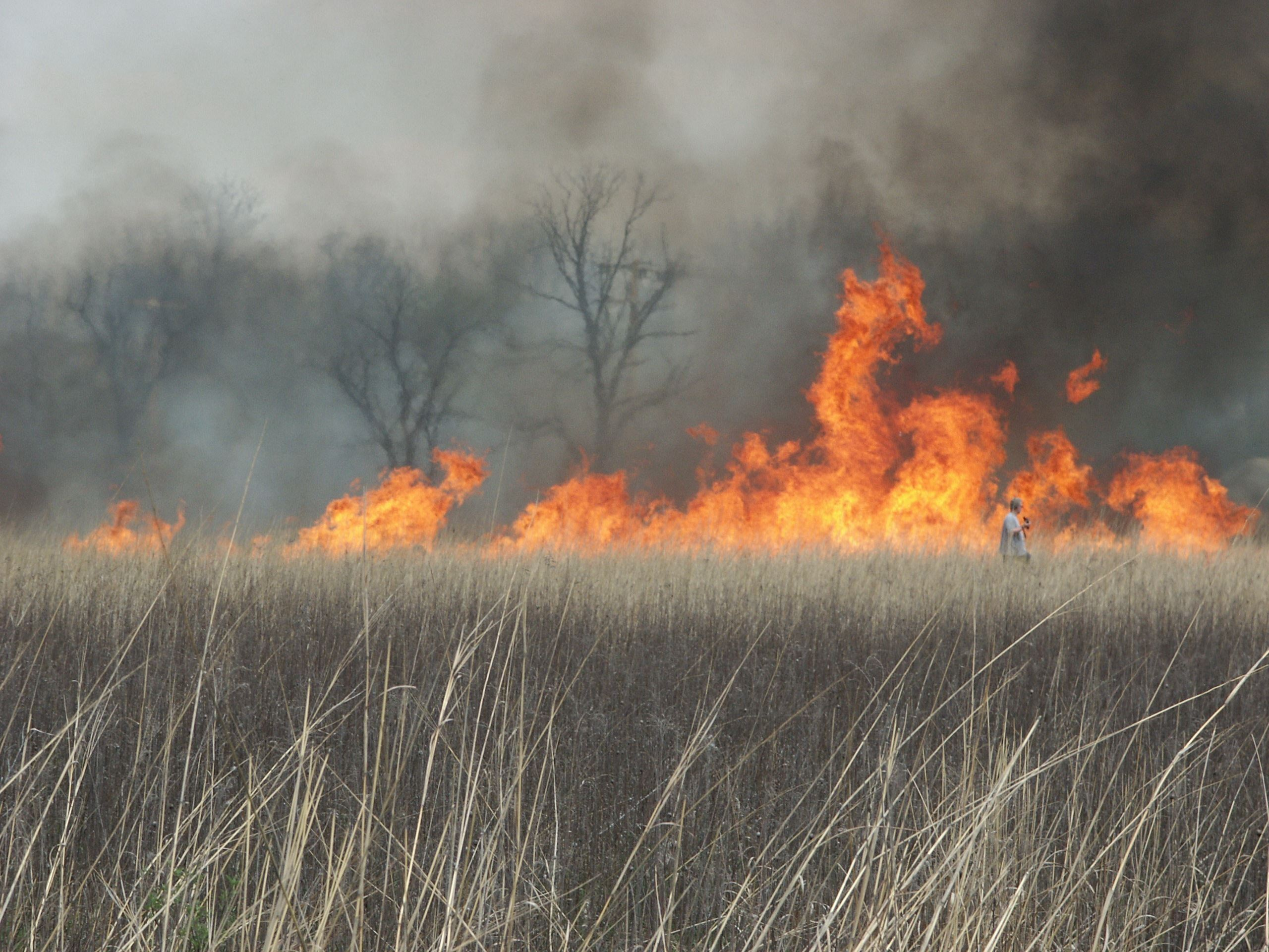 prairie burn at Ritchey Woods