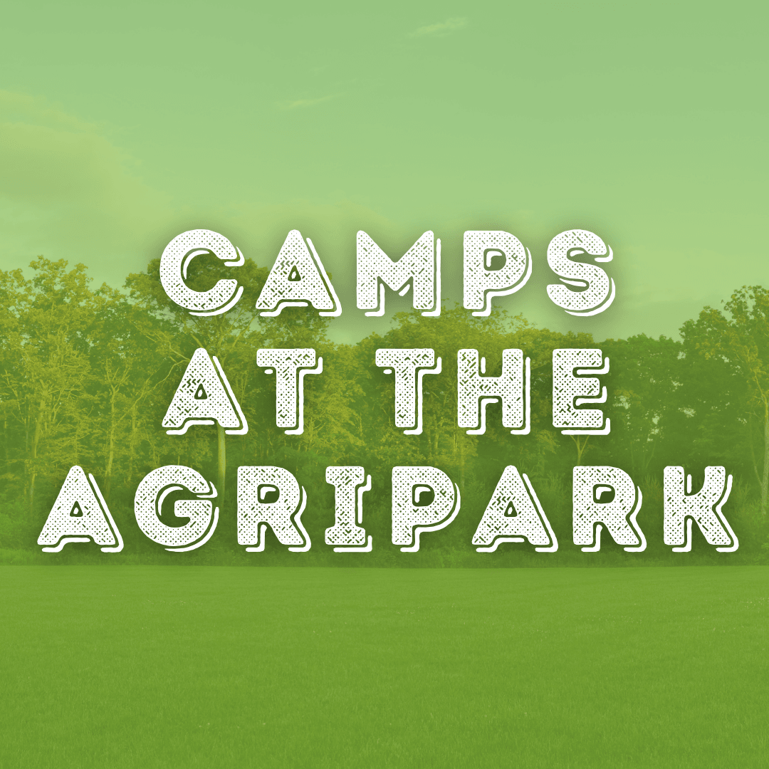 camps at the agripark